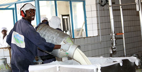 Stakeholders Seek Alliance With Dairy Farmers To Boost Output