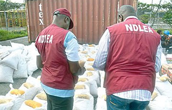 NDLEA Arrest 36 Suspects In 2 days in Jigawa