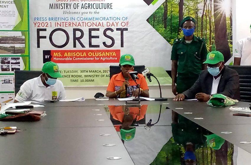 Lagos To Audit Forest Estates