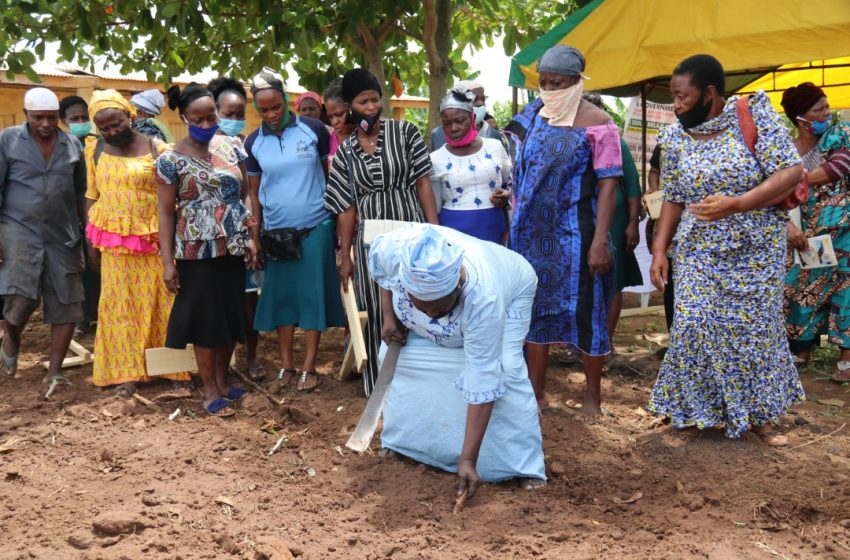 WAPA Trains 250 Grassroots Women On Cassava, Maize Cultivation.