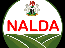 NALDA Builds Farmers' Capacity On Rice Irrigation