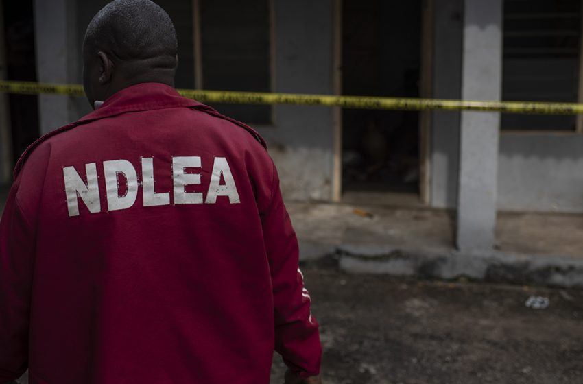 NDLEA Raids Eateries in Plateau, Enugu, Recovers Drugged Cakes, Cocaine