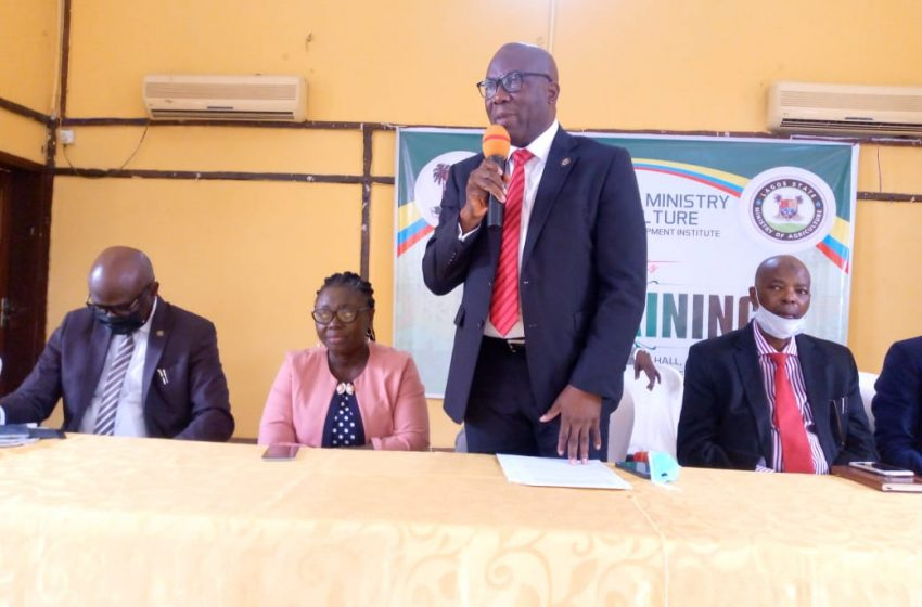 LASG ASSURES SMEs OF SUPPORT