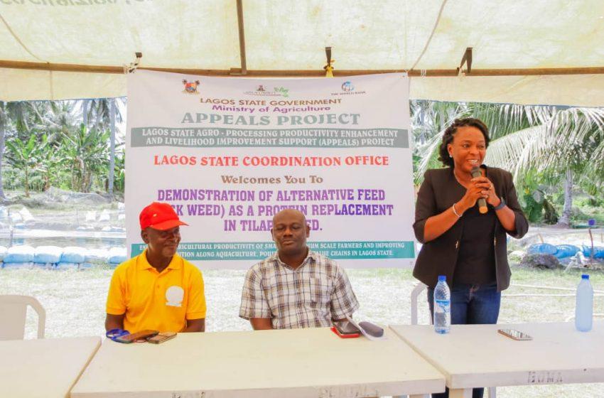 LAGOS TRAINS FISH FARMERS TO INCREASE PRODUCTIVITY
